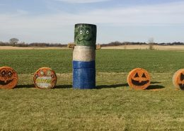 Farm Holiday Decorations 3
